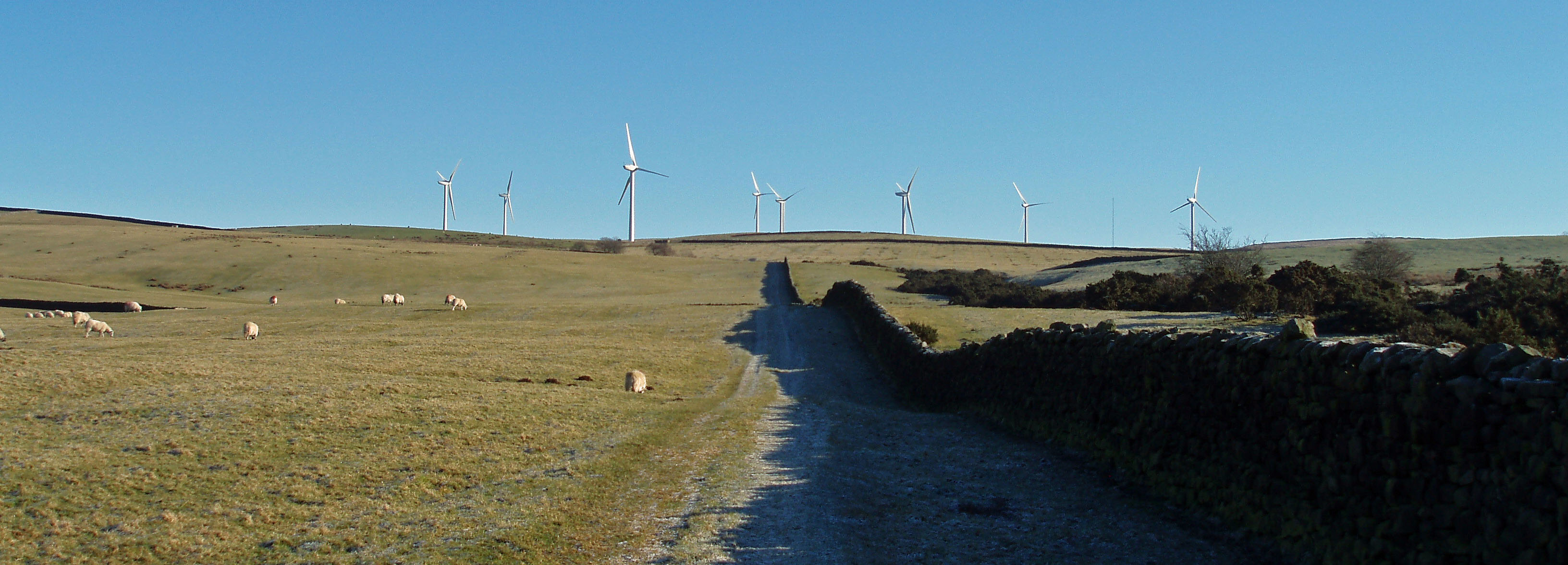 Caton turbines from path